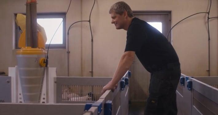 Et billede af svineproducent Nikolaj Larsen, der betragter smågrisene i klimastalden