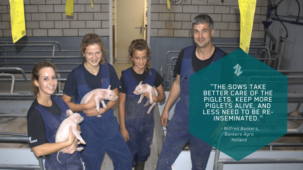 An image of the team at the sow farm at Bankers Agro in Holland after using EP199 for their sowherd and EP100i for the piglets