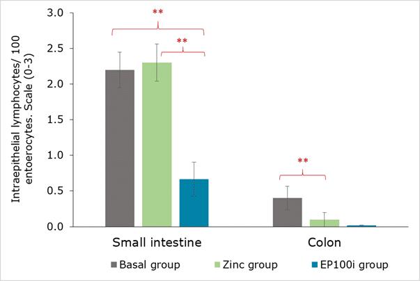 En tabel, der viser, hvordan det fermenterede rapsprotein EP100i dæmper betændelsestilstande i smågrisens tyndtarm og tyktarm sammenlignet med andre fodertyper