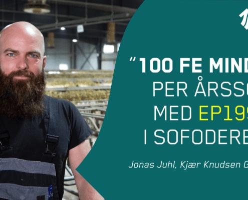 100-FE-sparet-i sofoderet-per-årsso